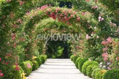 Fotomural Arco de Rosa en el Jardín