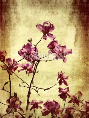 Fotomural Hermoso fondo de grunge con flores de magnolia