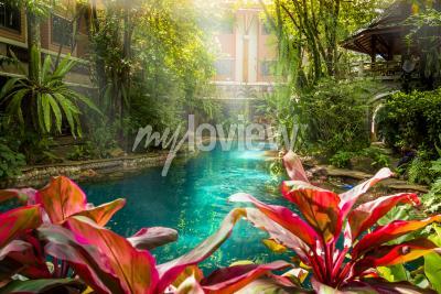 Fotomural Estilo de piscina de selva bajo árboles y fondo de la casa en el tiempo de sol