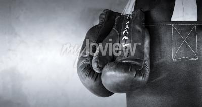 Fotomural Boxing gloves