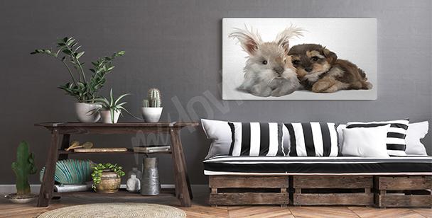Cuadro animales pintados con acuarela