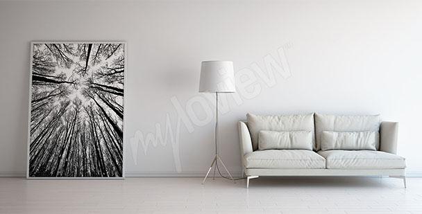 Cuadro árboles blanco y negro