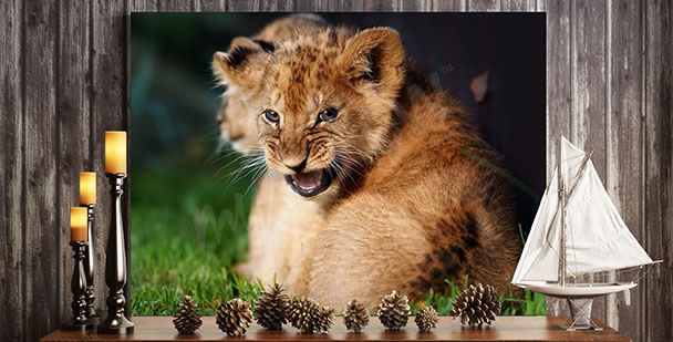 Cuadro cachorro de león