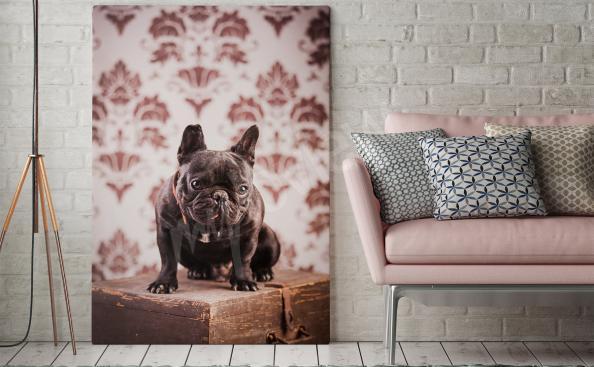 Cuadro de estilo vintage con un perro