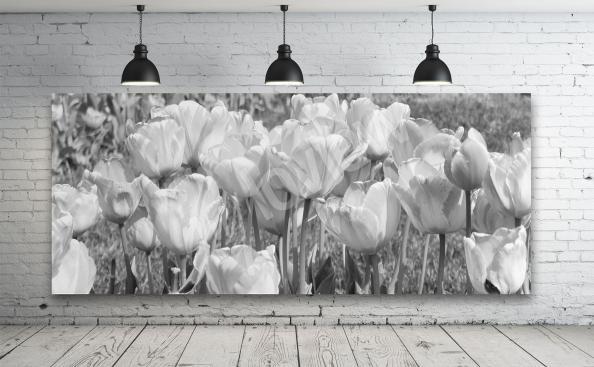 Cuadro de tulipanes blanco y negro