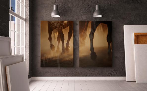 Cuadro díptico caballo
