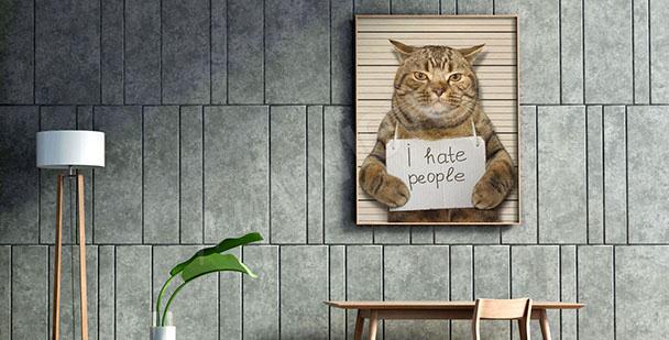 Cuadro gato para adolescente