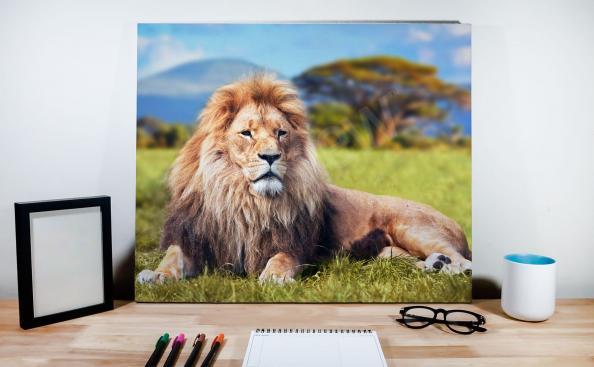 Cuadro león macho en el fondo del paisaje