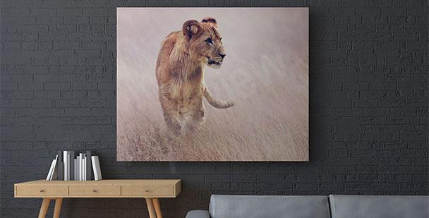 Cuadro leona en la hierba