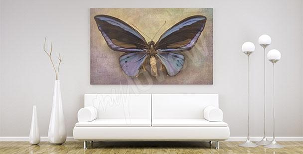 Cuadro mariposa minimalista
