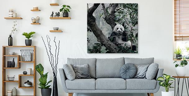 Cuadro panda entre arbustos