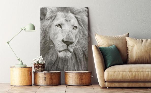 Cuadro retrato de un león en blanco y negro