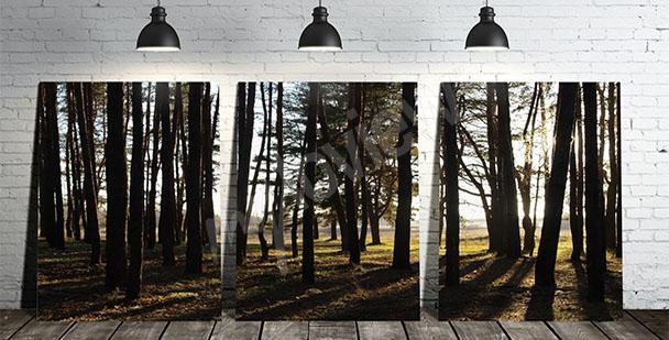 Cuadro tríptico con árboles
