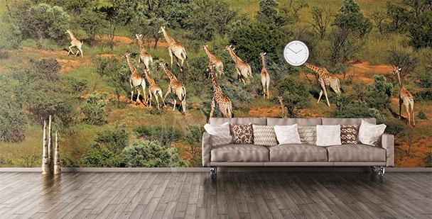 Fotomural animales de África