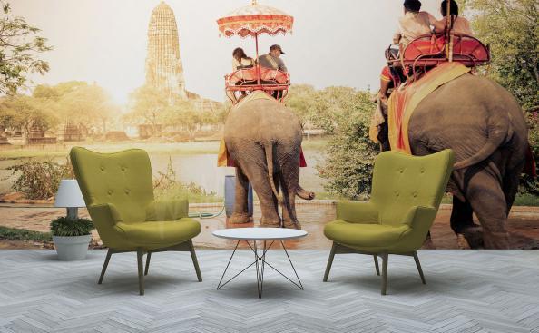 Fotomural Asia - turistas en elefantes