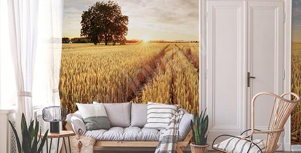 Fotomural campo de trigo