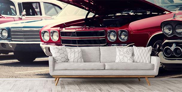 Fotomural coches para salon