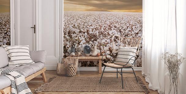 Fotomural cultivo de algodón
