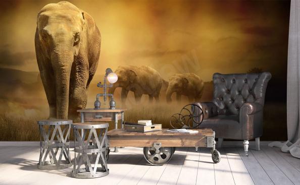 Fotomural elefantes africanos