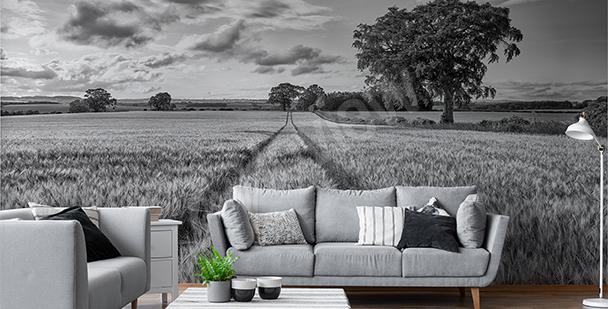 Fotomural en blanco y negro campo