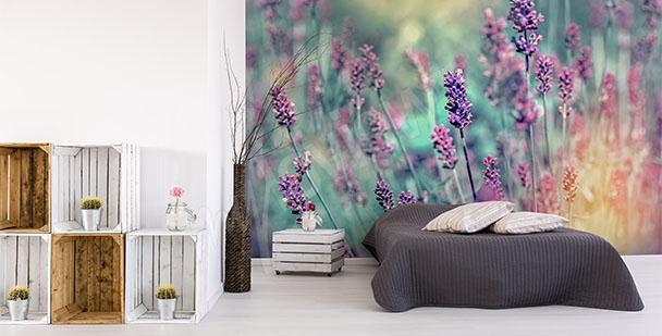 Fotomural flores de lavanda