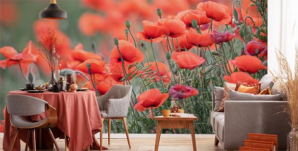 Fotomural flores rojas