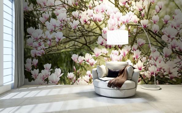 Fotomural magnolia en el jardín