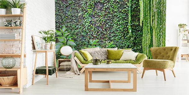 Fotomural muro con hiedra