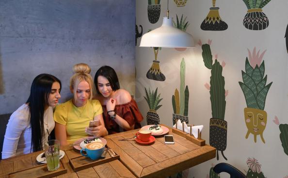 Fotomural para restaurante con cactus