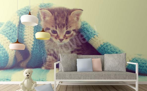 Fotomural pequeño gatito