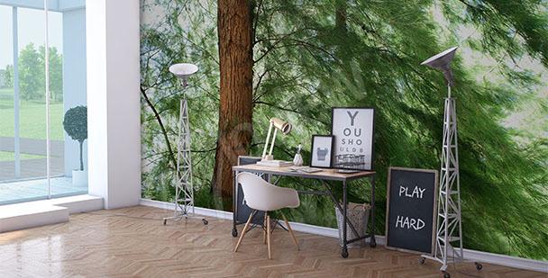 Fotomural pino verde
