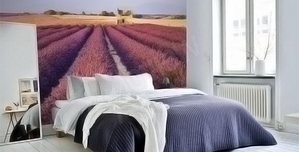 Fotomural prado de lavanda