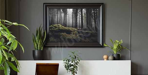 Póster bosque misterioso