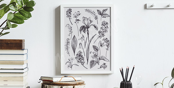 Póster dibujo de flores