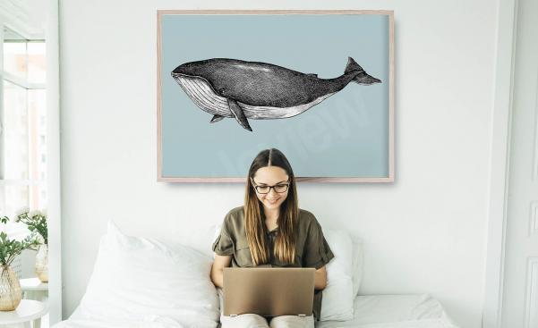 Póster ilustración de una ballena