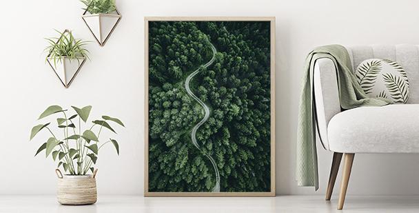 Póster verde naturaleza
