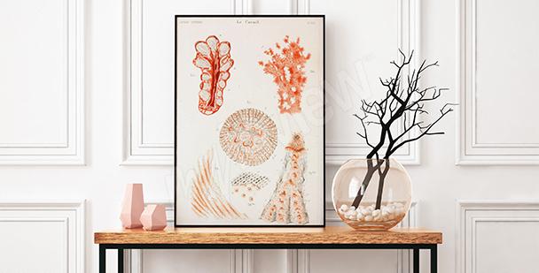 Pósteres corales para vestíbulo