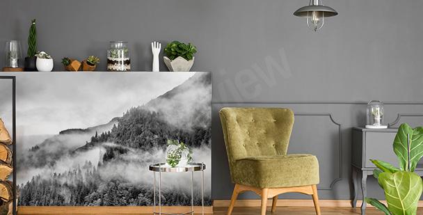 Vinilo blanco y negro bosque