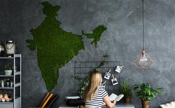 Vinilo mapa de La India para la sala de estar